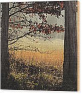 Tommy's Serenity Wood Print