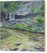 Tom Branch Falls Wood Print