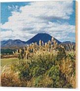Tongariro National Park New Zealand Wood Print
