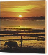 Tonle Sap Sunrise 01 Wood Print