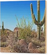 Tonto National Forest Cactus Wood Print