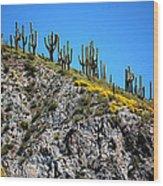 Tonto Ridge 16112 2 Wood Print