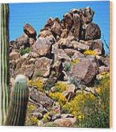 Tonto Saguaro Rocks 10189 Wood Print