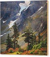 Top Of Cascade Pass Wood Print