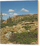 Top Of The World Wood Print
