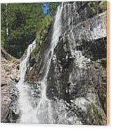 Top Part Of Silver Falls Wood Print