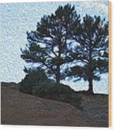 Top The Red Rocks Wood Print