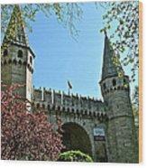 Topkapi Palace Wall And Gate In Istanbul-turkey Wood Print