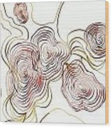 Topo Wood Print