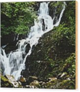 Torc Waterfall Wood Print