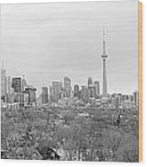 Toronto In Black And White Wood Print