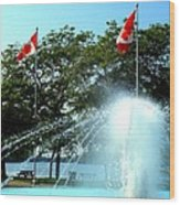 Toronto Island Fountain Wood Print