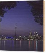 Toronto Skyline At Night Wood Print