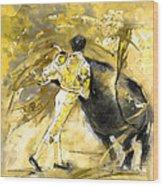 Toroscape 66 Wood Print