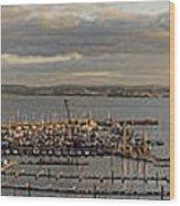 Torquay Panorama Wood Print