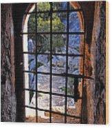 Torre Des Savinar Wood Print