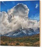 Torres Del Paine 2 Wood Print