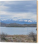 Torres Del Paine National Park Wood Print