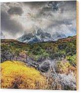 Torres Del Paine Peaks Wood Print