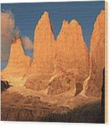 Torres Del Paine Wood Print