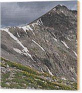 Torreys Peak Wood Print by Aaron Spong