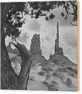 Totem Pole - Arizona Wood Print