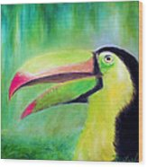 Toucan Land Wood Print