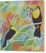 Toucan Play At This Game Wood Print