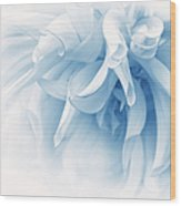 Touch Of Blue Dahlia Flower Wood Print