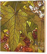 Touch Of Fall Wood Print