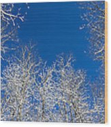 Touching The Winter Sky Wood Print
