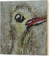 Tough Ol Bird Wood Print