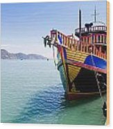 Tour Boat Wood Print