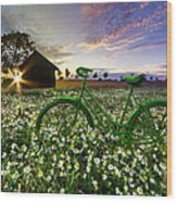 Tour De France Wood Print by Debra and Dave Vanderlaan