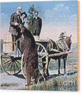 Tourist Feeding Bear Yellowstone Np Wood Print