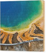 Tourists At Grand Prismatic Wood Print