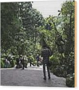 Tourists Inside A Downward Sloping Section In The Orchid Garden Wood Print