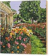 Tournament Of Roses II Wood Print