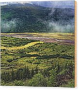 Toutle River Valley Wood Print