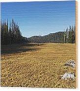 Towards Hand Lake And Mt Jefferson Wood Print