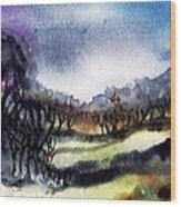 Towards The Misty Bogland  Wood Print by Trudi Doyle