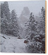Towards Top Of Bear Peak Mountain During Intense Snow Storm - North Side Wood Print