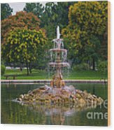 Tower Grove Fountain Wood Print