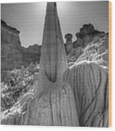 Tower Of Silence Monochrome Wood Print