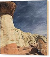 Towering Above The Landscape Wood Print