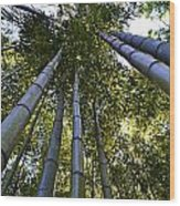 Towering Bamboo Wood Print