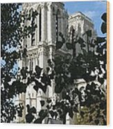 Towers Of Notre Dame Wood Print