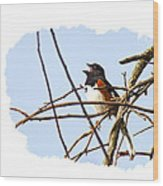 Towhee Singing On Top Of Mountain Wood Print