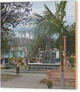 Town Center Of Parromos Wood Print