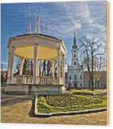 Town Of Bjelovar Central Park Wood Print